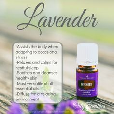 Yes! I l Love Lavender! Young Living essential oils, please! Let me answer your questions. Distributor # 11158647