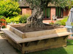 Tiered Garden Beds | Ancient olive, oak tiered beds and seating (click to view)