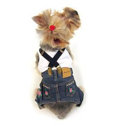 pantalon denim perro