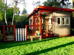 Chicken Coop in the backyard? Why not!