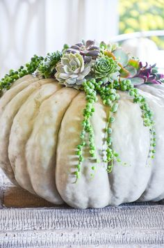 100 FABULOUS FALL PUMPKIN IDEAS, PART 1- Here are 100 great ways to decorate with the quintessential fall element- PUMPKINS!