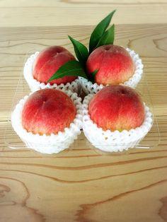 やっと待ちに待った桃が入ってきました~♪  品種ははなよめ  桃の種類の中で1番最初の種類 肉質は柔らかくてジューシーです!  パック2個入り  390円            4個入り  500円... 詳しくは http://asagiri-kogen.com/73417/?p=5&fwType=pin