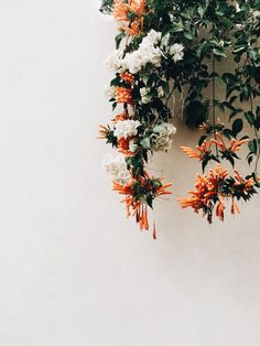 Adorable Examples How To Arrange Hanging Flowers For Your Yard - DIY Summer Floral Arrangements Hanging Flowers, Wild Flowers, Beautiful Flowers, Bouquet Flowers, Unique Flowers, Exotic Flowers, Spring Flowers, Wedding Flowers, Plants Are Friends