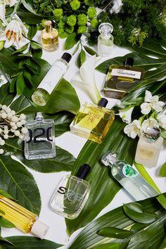 Ноты освежающего бергамота, зелёного чая, бодрящего тимьяна и амброксана — The Village выбрал несколько композиций, которые подойдут для весны и лета