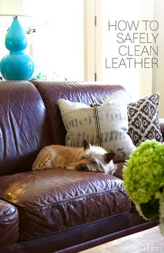 Keep your leather looking fresh without damaging it: http://www.bhg.com/homekeeping/house-cleaning/surface/how-to-clean-leather/?socsrc=bhgpin101814