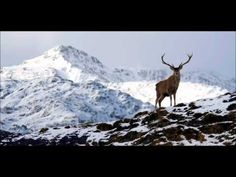 Dick Gaughan - The Snows They Melt The Soonest - YouTube