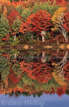 Thornton Lake, Upper Penninsula, Michigan