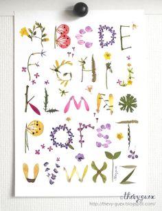 Affiche Poster Alphabet Abécédaire Illustration Herbier Feuille Fleur Séchée Multicolore Décoration Murale Décor Chambre Enfant : Affiches, illustrations, posters par thevy-guex