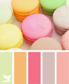 macaroon hues for tea party theme lime green tangerine orange cotton candy pink violet purple soft rose lemonade