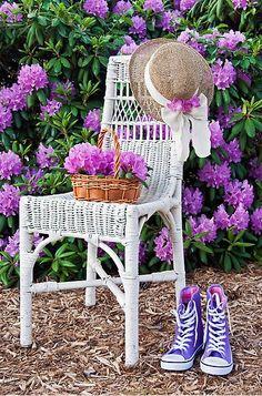 ...purple and white....