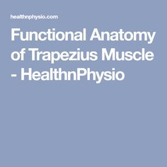 Functional Anatomy of Trapezius Muscle - HealthnPhysio Shoulder Joint, Neck And Shoulder Pain, Thoracic Vertebrae, Scapula, Cranial Nerves, Tension Headache, Muscle Pain, Anatomy, Health Fitness