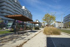 Avenue Raymond Dugrand desservie par la ligne 3 du tramway - Photo J. Thomazo