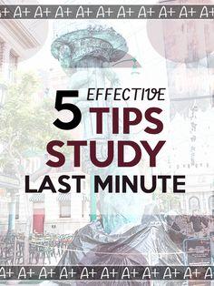 chief undergraduate college subjects last minute essay writing service
