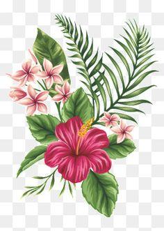 Draw hawaiian flowers best hibiscus drawing ideas hibiscus flower how to draw hawaiian flowers step by step Hawaiian Flowers, Hibiscus Flowers, Tropical Flowers, Hawaiian Flower Drawing, Hibiscus Flower Tattoos, Hibiscus Flower Drawing, Tropical Art, Lilies Flowers, Cactus Flower