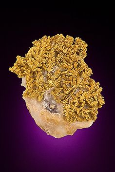 Native Gold, Hope's Nose, Torquay, South Devon, Devon. England. 3.5 x 3 x 0.9 cm
