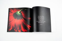 Faith in Bloom. A photo book with spiritual by ThomasBrainPhotos