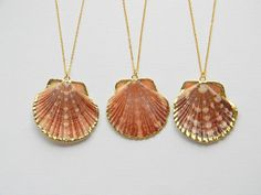 Sea Shell Necklace - Scallop Shell Necklace - Gold Necklace - Bohemian Necklace - Summer Boho Chic Necklace - Gift - OOAK via Etsy