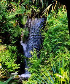 Masoala Nationalpark, Madagaskar. Das grüne Auge Madagsakars liegt auf der gleichnamigen Halbinsel im Nordosten und bietet immergrünen, feuchten und tropischen Regenwald mit einer einzigartigen Flora und Fauna. Es ist das größte zusammenhängende Regenwaldgebiet Madagaskars. Flora Und Fauna, Basel, Waterfall, Outdoor, Tropical Rain Forest, Green Eyes, Madagascar, Vacation Places, National Forest