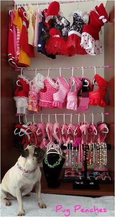 fondo de armario :)