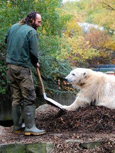 Knut and Thomas