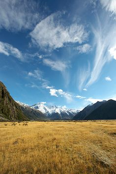 Far ovverrrrrrr... the mistyyy mountains coollld. Just kidding. We want nothing to do with Hobbits and everything to do with New Zealand.