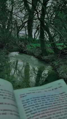 Dark Green Aesthetic, Nature Aesthetic, Book Aesthetic, Aesthetic Images, Paradis Sombre, Different Aesthetics, Slytherin Aesthetic, Dark Paradise, Green Wallpaper