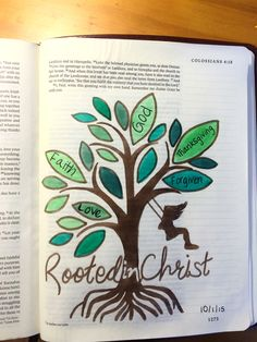 Bible Journal Colossians 2 Rooted in Christ