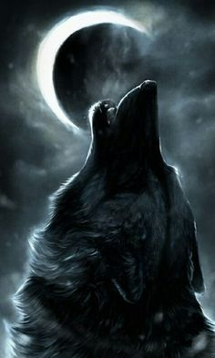 """astray-wolf-heart: """" By the light of the moon and my piercing howl I am further transformed into a cunning beast. From the circle of life to the evolution of man, I shall be reawakened as one with the. Anime Wolf, Wolf Spirit, My Spirit Animal, Spirt Animal Quiz, Beautiful Wolves, Animals Beautiful, Wolf Stuff, Wolf Quotes, Howl At The Moon"""