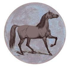 Celestial Horse | China Rose