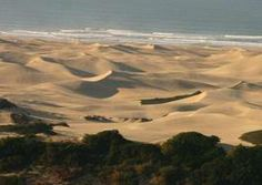 alexandria dunes south africa - Google Search