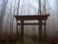 "Sam Calhoun on Instagram: ""Torii gate at Monte Sano State Park's North Alabama Japanese Garden.  #montesanostatepark #visitnorthal #explore #getoutstayout…"""