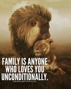 Inspirational Quotes About Life and Motivation that Everybody Needs. { is My Favorite} – The Only Downey Wisdom Quotes, True Quotes, Words Quotes, Key Quotes, Inspiring Quotes About Life, Inspirational Quotes, Lion Quotes, Animal Love Quotes, Love You Unconditionally