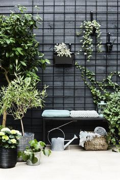 I like the use of black metal grids attached to a black fence . - I like the use of black metal grids attached to a black fence to train and hold … – # fixed - backyard design diy ideas Black Garden Fence, Black Fence, Green Fence, Potager Garden, Terrace Garden, Small Terrace, Small Patio, Garden Trellis, Garden Table