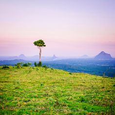 Looking down over the Glasshouse Mountains from Maleny at sunset. Photo by Matthew Taylor Thomas Queensland Australia, Australia Travel, Western Australia, Tasmania, Oh The Places You'll Go, Places To Visit, Glasshouse Mountains, Sunshine Coast, Glass House