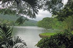 Lago Dos Bocas, Puerto Rico... from 6 mos. old to 18 yrs. old, where I grew up.
