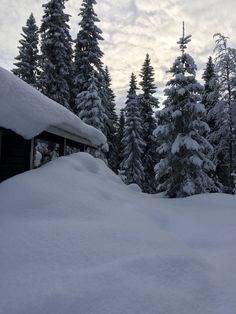 Trysil, Norway All Pictures, Picture Photo, Norway, Outdoor, Pictures, Outdoors, Outdoor Games, The Great Outdoors