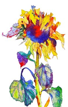 Watercolor Sunflower, Sunflower Art, Abstract Watercolor, Watercolor Flowers, Watercolor Paintings, Watercolors, Botanical Art, Botanical Illustration, Gif Disney