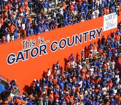 Go Gators!!!- sun shinning bright orange & blue clear skies :) I'll never forget game days in the swamp :) Go Gators!!!!!!!