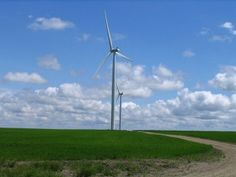 Green Energy Commodities | Why more companies are investing in Renewable Energy Certificates