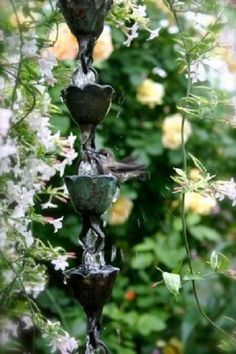 Look close, can you see it?  The sweet humming bird dancing in the rain chain!