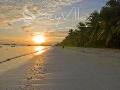 Praslin Seychelles, Amazing Sunsets, Beaches In The World, Beach Travel, Beach Photos, Villas, Island, Water, Life