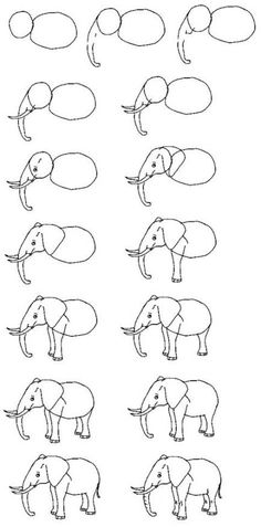 Draw an elephant. Note: This is a hybrid of the Asian and African elephant. Ears are African elephant (Asian elephant has smaller ears). Back is an arch like Asian elephant. (African elephant has a dip in the back). Easy Elephant Drawing, Elephant Art, Elephant Drawings, Draw An Elephant, Cartoon Elephant Drawing, How To Draw Steps, Learn To Draw, African Forest Elephant, Angel Drawing