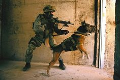 Support Police K9 & MWD