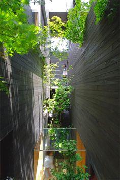 Dentist office is Japan, designed by Keisuke Maeda of UID Architects