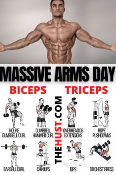 Arm Day Workout, Chest And Tricep Workout, Back And Bicep Workout, Bicep And Tricep Workout, Best Gym Workout, Good Arm Workouts, Forearm Workout, Gym Workouts For Men, Gym Workout Chart