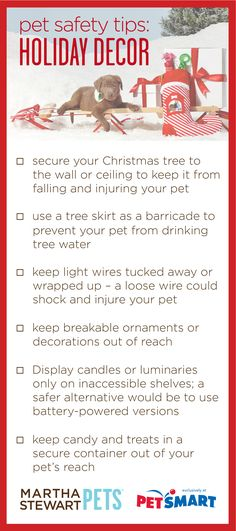 Holiday Pet Safety: Holiday Decor | #marthastewartpets @petsmartcorp #petcare #pettips