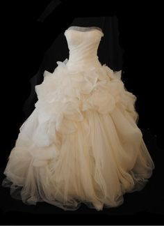 Vera Wang Hayley Wedding Dress. Vera Wang Hayley Wedding Dress on Tradesy Weddings (formerly Recycled Bride), the world's largest wedding marketplace. Price $4500.00...Could You Get it For Less? Click Now to Find Out!