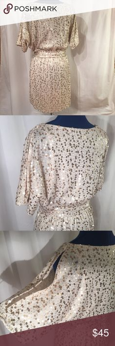 Sparkly sequin dress keyhole sleeves Size Med Good condition! Sparkly and fun! The entire dress is covered in sequin 😍 Size M Jetties Sleeves. Gathered waist. Cute belts.  Fully lined 80% Polyester  20% Rayon Gorgeous cream color and gold sequins   Any questions just ask :) New York & Company Dresses Midi