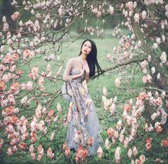 The bird in the magnolia - The bird in the magnolia