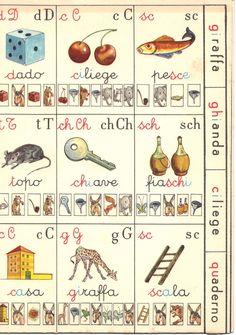 Alfabetiere individuale